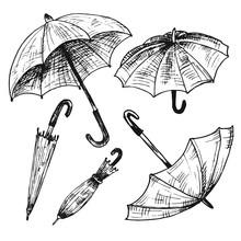 Drawing Set Of Umbrellas. Umbrellas From A Rain, Female Umbrella