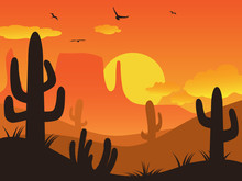 Sunset Cactus Desert