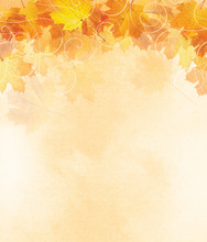 Autumn Leaf Illustration With ...