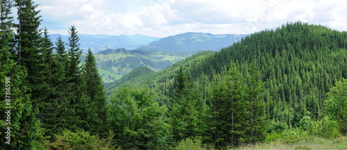Foto auf Leinwand Gebirge Panorama of Beautiful Mountain forest