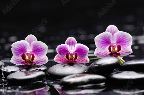 Staande foto Spa Beautiful three pink orchid and therapy stones