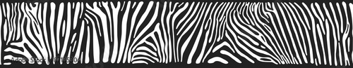 Vector background with zebra skin - 87135306