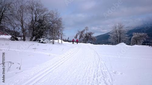 Papiers peints Alpes Winter landscape - road in forest