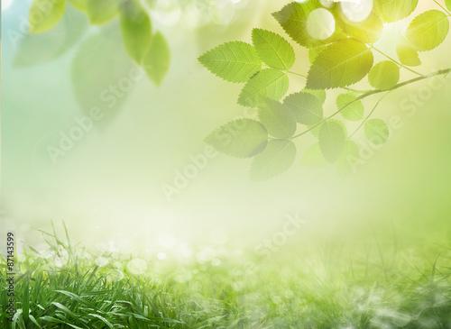 Staande foto Lente Abstract spring background 23