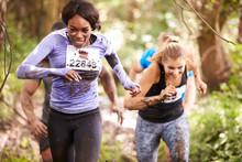 Two Women Enjoying A Run In A ...