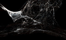 Abstract Spiderweb On Black Ba...