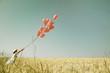 canvas print picture - Konzept für Liebe, Freiheit, Mut. Hintergrund mit roten Luftballons und einem Mädchen im Sommer