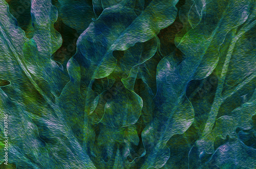 Fotografia, Obraz  Fronds in Green and Turquoise