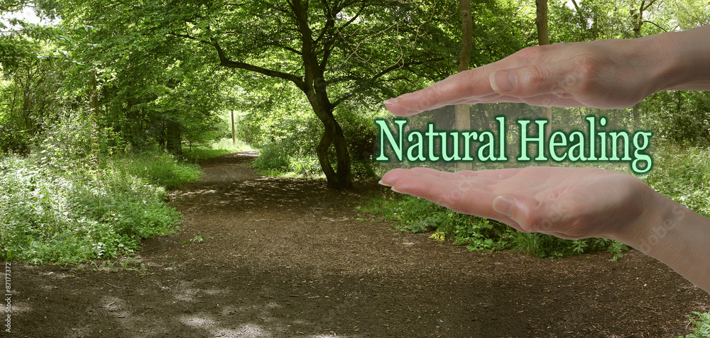 Fototapety, obrazy: The Path To Natural Healing - female parallel hands with the words Natural Healing floating between on a green woodland path background depicting the path to natural healing