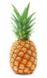 canvas print picture - ripe pineapple isolated on white background
