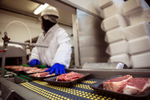 Meat Food Handling Safety Glov...