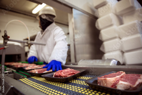 Fototapeta Meat food handling safety gloves and suit with mask obraz