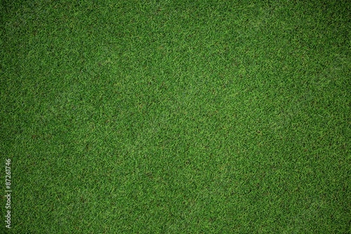 Cuadros en Lienzo Close up view of astro turf