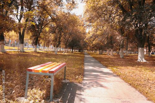 Fotobehang Zwavel geel landscape park in the city autumn