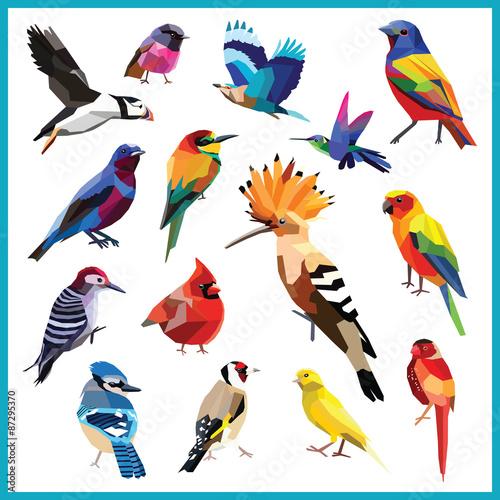 Birds Set Of 15 Birds Low Poly Chalkboard Design Isolatedbee Eater