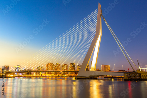 Canvas Prints Swan Erasmus bridge Rotterdam
