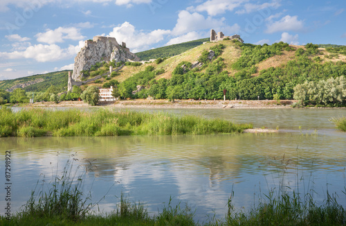 Foto op Aluminium Rudnes The ruins of Devin castle near Bratislava over the Danube river.