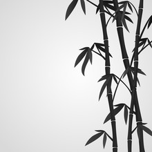Background With Bamboo Stems