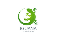 Lizard Logo Design Vector Template. Iguana Icon Illustration...S
