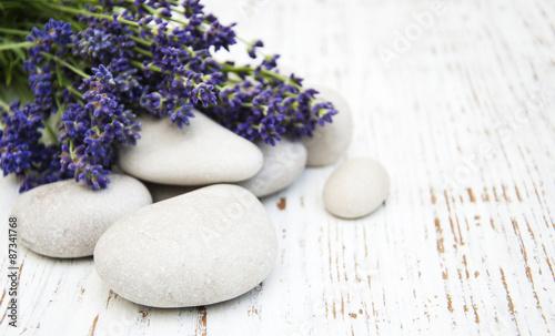 Pinturas sobre lienzo  Lavender spa