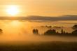 Picturesque misty sunrise landscape. Foggy morning meadow,