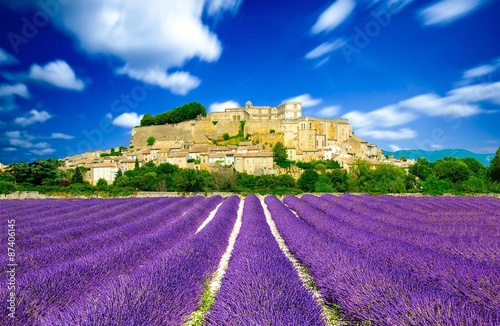Spoed Foto op Canvas Lavendel Provence - Lavender fields in France