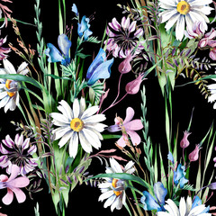 Fototapeta Natura Field Flowers Seamless Pattern