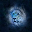 canvas print picture - Horoscope Lion
