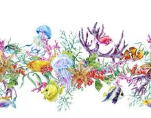 Summer Vintage Watercolor Sea Life Seamless Border With Seaweed