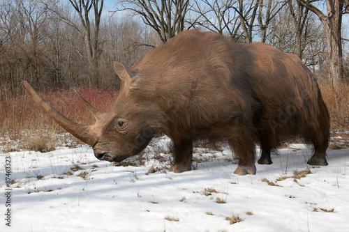 Fototapeta premium An illustration of the extinct Woolly Rhinoceros slowing making his way through an Ice Age forest. The woolly rhinoceros was a member of the Pleistocene megafauna, common throughout Europe and Asia.