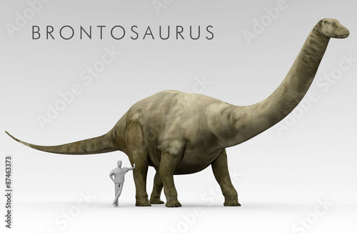 Photo  An illustration of the recently renamed dinosaur Brontosaurus (formerly known as Apatosaurus) depicted alongside an average height human
