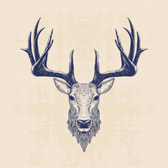 Fototapeta deer head