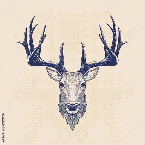 deer head - 87477798