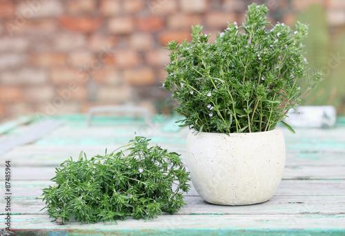 Fotografía  bundle of savory, in a vase