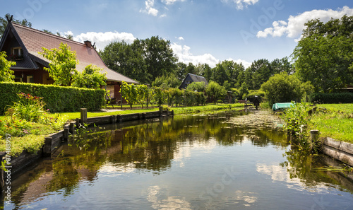 Photo Stands Water lilies Wasserkanal im Spreewald