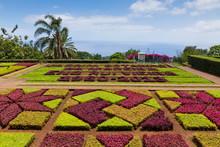 Tropical Botanical Garden In F...