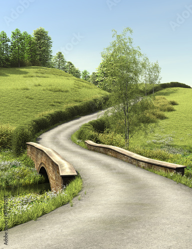 Foto op Canvas Olijf Country lane in summer time in day. Rural road and the small bridge are surrounded with a green grass and trees