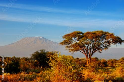Staande foto Afrika Beautiful Kilimanjaro mountain after sunrise in morning, Kenya,Amboseli national park, Africa
