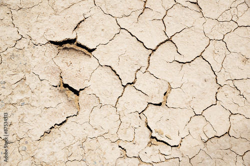 Fotografie, Tablou  parched earth background