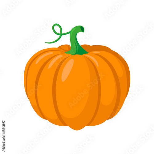 Pumpkin vegetable. Fotobehang