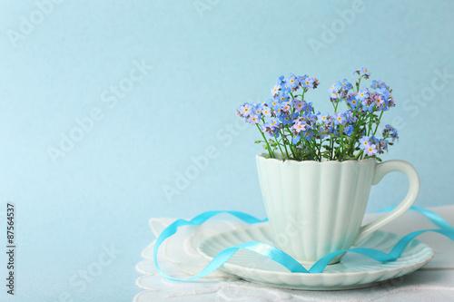 Fototapeta Forget-me-nots flowers in cup, on blue background obraz na płótnie