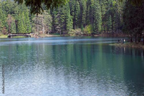 Fototapety, obrazy: blue lake Synevyr