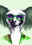 fashion animal .watercolor illustration - 87593573