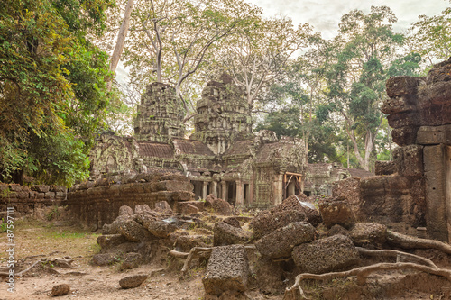 Photo  Ta Prohm Temple ancient tree roots, Angkor