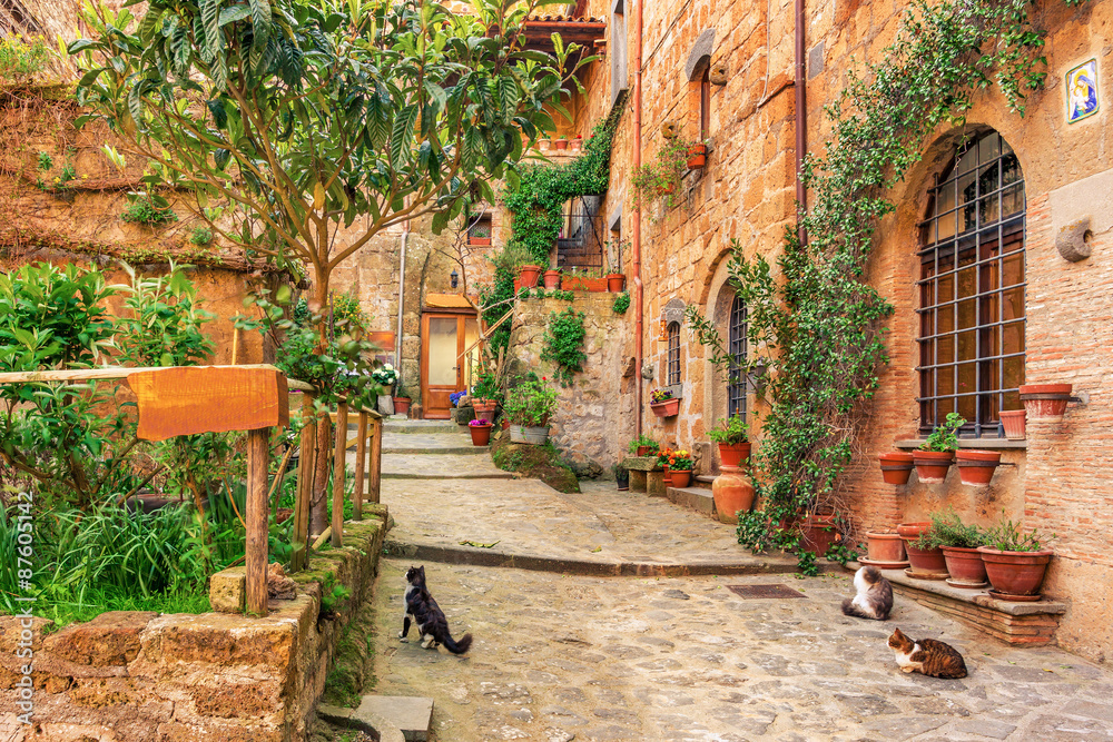 Fototapeta Beautiful alley in old town Tuscany