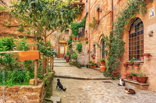Fototapety, obrazy: Beautiful alley in old town Tuscany