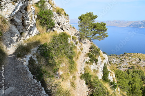 Kolory fototapet szlak-turystyczny-z-przepieknym-widokiem-w-poblizu-alcudia-na-majorce