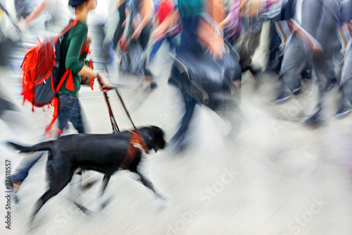 Guide dog is helping bilnd people Canvas Print