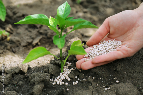 Female hand with fertilizer for plant over soil background