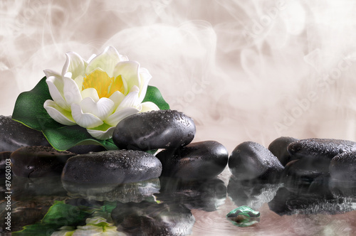 Poster de jardin Nénuphars Water lily on black stones with water and vapour